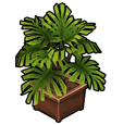 furniture_plant